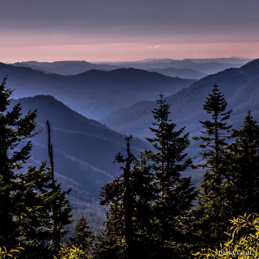 cascade range and plentiful resources Introduction with craggy shorelines, volcanic mountains, and high sage deserts, the northwest's complex and varied topography contributes to the region's rich climatic, geographic, social, and ecologic diversity.